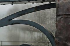 Nasses spiderweb auf einem Metallgeländer stockbilder