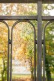 Nasses Spinnennetz in einem Zaun I Stockbilder