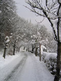 następnie zimy. zdjęcia stock