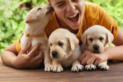 Nastolatek chłopiec trzyma jego ślicznych labradorów szczeniaki, mieć zabawę i cieszy się ich firmy zdjęcia royalty free
