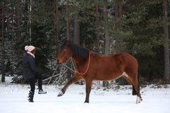 Nastolatek dziewczyna i brown koń bawić się wpólnie fotografia stock