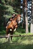 Nastolatek dziewczyna skacze nad ogrodzeniem z koniem fotografia royalty free
