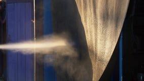 Nastolatek myje dywan z strumieniem woda zdjęcie wideo