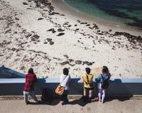 Nastolatkowie Ogląda foka lwy w losie angeles Jolla Kalifornia Zdjęcie Stock
