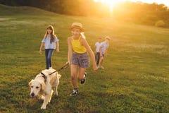 Nastolatkowie z psim odprowadzeniem w parku zdjęcie stock