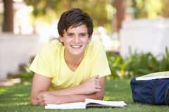 nastoletni samiec studiowanie parkowy studencki Zdjęcia Royalty Free