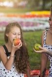Nastoletni zdrowy styl życia Rodzinny pinkin fotografia stock