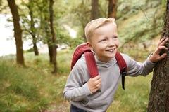 Nastoletnia chłopiec bierze przerwę opiera na drzewie podczas podwyżki w lasowym, podwyższonym widoku, zakończenie w górę obraz stock