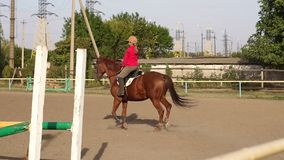 Nastoletnia dziewczyna angażująca w horseback jazdie Wolny mo zdjęcie wideo