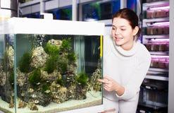 Nastoletnia dziewczyna pokazuje jaskrawy rybiego barbus Zdjęcia Stock
