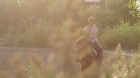 Nastoletnich dziewczyn przejażdżki na brown koniu na koniu uprawiają ziemię zdjęcie wideo
