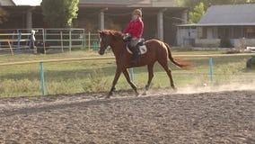 Nastoletnie dziewczyn przejażdżki na brown koniu na koniu uprawiają ziemię zbiory