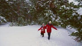Nastoletnie dziewczyny biegają szczęśliwego w sosnowym zima śniegu parku i śmiają się Dziecko sztuki keczup w zimie Bożenarodzeni zbiory wideo