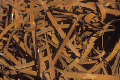Nastri metallici di arrugginimento che si siedono in un mucchio Immagini Stock Libere da Diritti