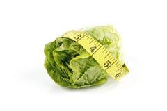 nastro dell'insalata di misura del lettace Immagine Stock