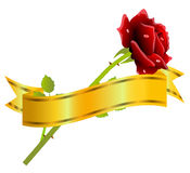 Nastro dell'oro e della rosa rossa su un fondo bianco Fotografia Stock