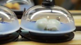 Nastro trasportatore nel ristorante di sushi nel Giappone stock footage