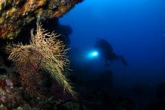 Nastrojowy podwodny fotografia royalty free