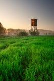 Nastroszona kryjówka na ranek mgłowej łące. krajobraz Obraz Stock
