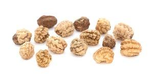 Nasturtium seeds Stock Image