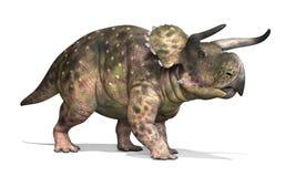 Nasutoceratops Dinosaur Stock Image