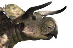 Nasutoceratops stående royaltyfri illustrationer