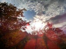 Nasycający z chmury niebem Zdjęcia Stock