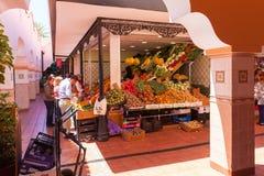Nasz dama Afryka rynku sklep Santa Cruz Tenerife Obraz Stock