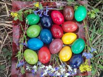 Nasz Wielkanocni jajka w 2015 zdjęcia stock