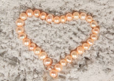 naszyjnik rosa rano perły sieci obrazy stock