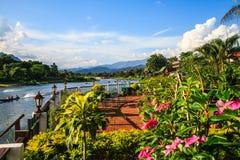 Natürlich in Laos stockfotos