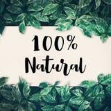 100% natürlich mit grünem Blatt freundlich, eco Umwelt, Konzept Lizenzfreie Stockfotografie