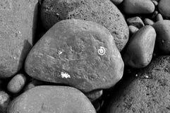Natürliche Auslegung auf schwarzem Lava-Felsen Stockfotos