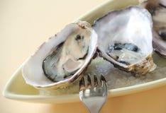 Natürliche Austern Stockfotos
