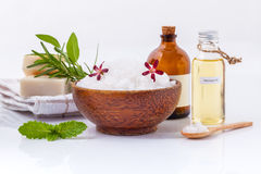 Natürliche Badekurortbestandteile des Seesalzes, Kräuter, Seife und Massageöle f lizenzfreie stockfotografie