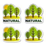 Natürliche Baumwaldaufkleber Stockbilder