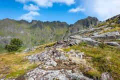 Natürliche Berglandschaft am Sommer in Lofoten, Norwegen stockbild