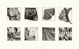 Natürliche Beschaffenheiten (Tinte) Lizenzfreie Stockfotografie