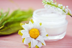 Natürliche Bestandteile für Kosmetikprodukte Lizenzfreies Stockfoto