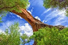 Natürliche Brücke Lizenzfreies Stockbild