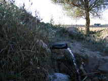 Natürliche Brunnen- und Frühlingsbilder Stockfotos