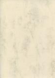 Natürliche Buchstabe-Marmorpapierbeschaffenheit der dekorativen Kunst, helle Geldstrafe maserte beschmutzten leeren leeren Kopien Stockbild