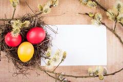 Natürliche Eier Stockfotografie
