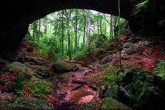Natürliche Felsen-Brücke Alabama stockfotos