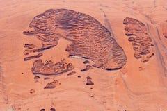 Natürliche Froschfelsritzungen auf Felsen Uluru Ayers Stockfotos