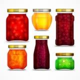 Natürliche Fruchtmarmelade konserviert Gläser Lizenzfreie Stockbilder