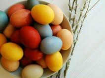 Natürliche gefärbte Eier in der Platte auf weißem hölzernem Hintergrund Junges Küken in Wanne, 2 malte Eier und Blumen stockbild
