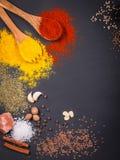 Natürliche Gewürze und Kräuter zerstreuten auf dunklen Hintergrund Natürliche und Biobestandteile für das Kochen lizenzfreies stockfoto
