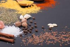 Natürliche Gewürze und Kräuter zerstreuten auf dunklen Hintergrund Natürliche und Biobestandteile für das Kochen stockfoto