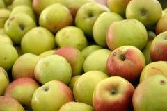Natürliche grüne Äpfel Stockfoto